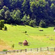 2995-Romania-pitoreasca