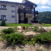 3042-Micul-alpinariu
